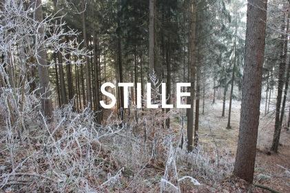 © Wilhelm Roseneder. STILLE Nr. 20361, 2012