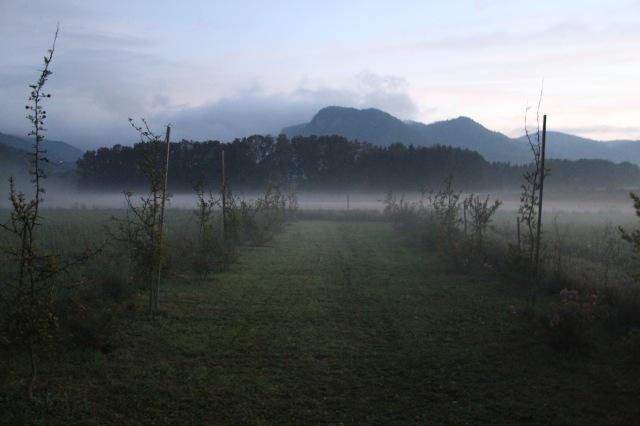 Landschaft_6701