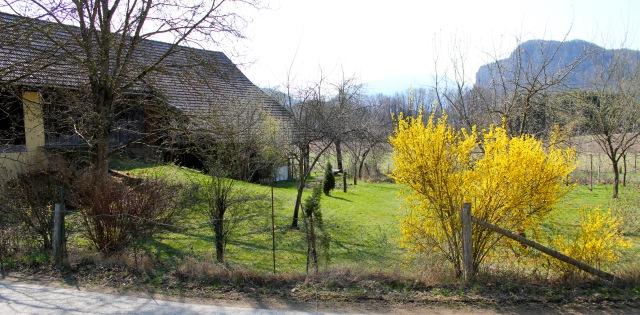 Landschaft_7575